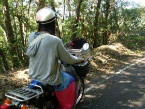 バイクでカケロマ・フェリー旅